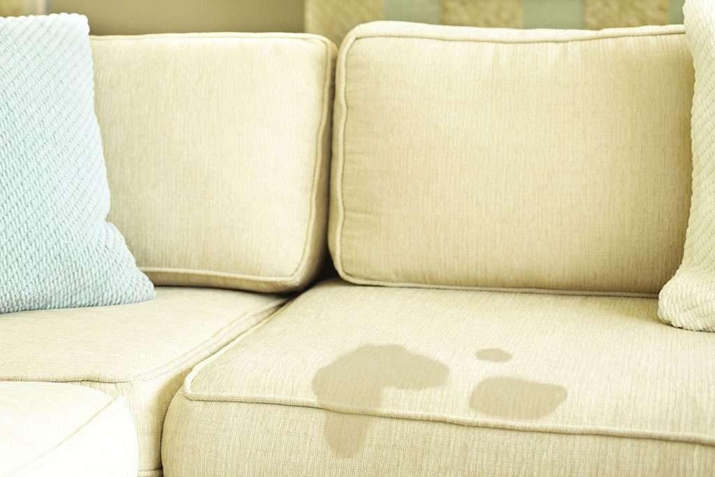 как вывести пятно от мочи на диване